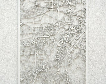 3d city map Magdeburg, 73x53cm