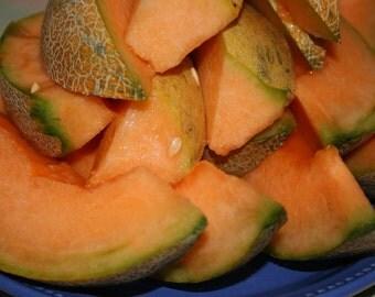 Arancino Cantaloupe Melon, Italian heirloom gardening seeds