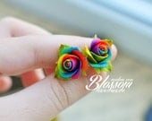 Rainbow, roses earrings, polymer clay
