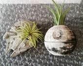 Death Star planter gift set, air plant holder, desk planter, Millennium Falcon, Star Wars geekery, nerdy gift