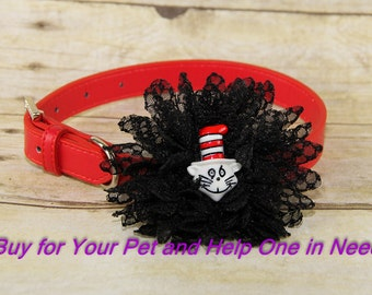 Dr Seuss Cat in the Hat, Honeycomb Lace Flower for Dog Collar Accessory (Collar not included), Collar Flower, Dog Accessory, Photograpy Prop