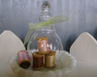 Small glass cloche with elongate hollow handle
