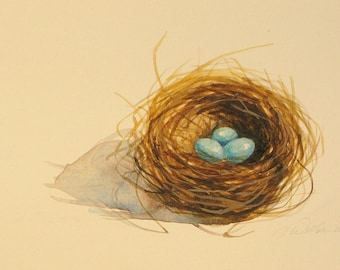 Original bluebird  or robins nest watercolor painting with 3 blue eggs small original watercolor bluebird nest