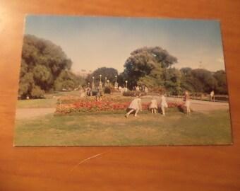 Vintage Original The Public Gardens Boston Mass Postcard Free Shipping