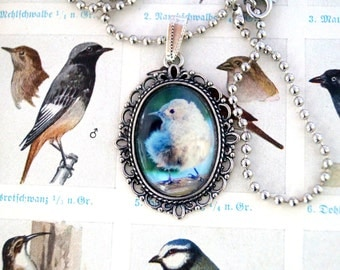 Bird necklace - small Pipit - birds