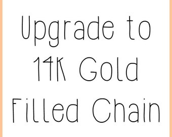 Upgrade To A 14k Gold Filled Chain and Clasp (Upgrade Only)