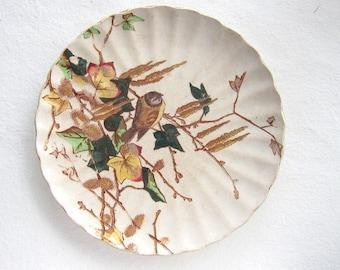 Vintage bird plate