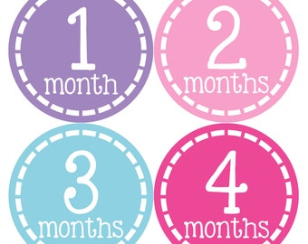 Monthly Baby Stickers Baby Month Stickers Baby Girl Month Stickers Monthly Photo Stickers Monthly Milestone Stickers 453