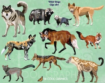 Wild Dogs Digital Realistic Clip Art, PNG, Printable, Gray Wolf, Dingo, Maned Wolf, Dhole, Spotted Hyena, African Wild Dog, Golden Jackal