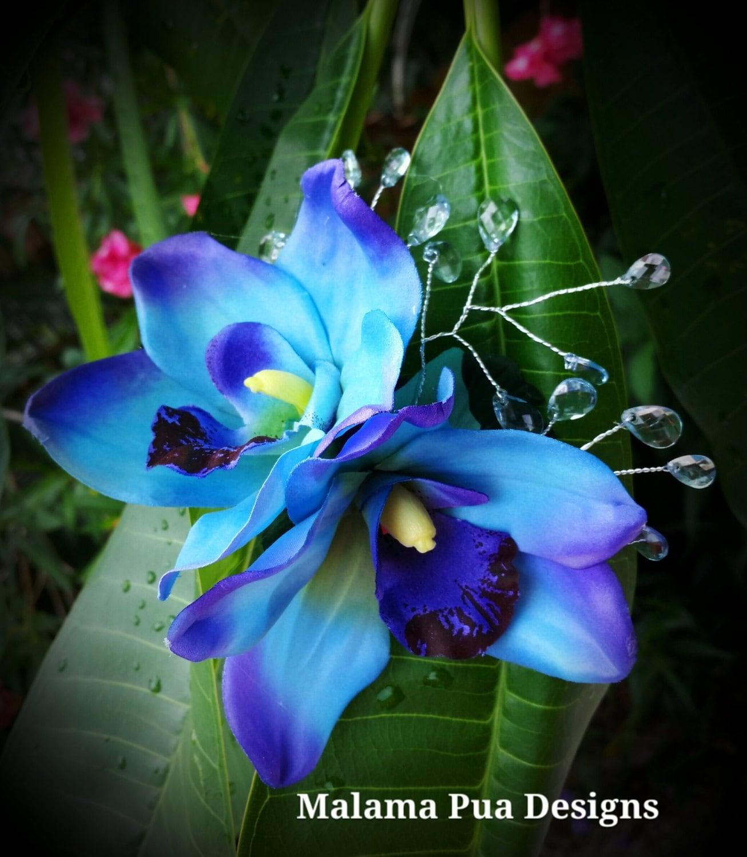 Blue Tropical Flowers