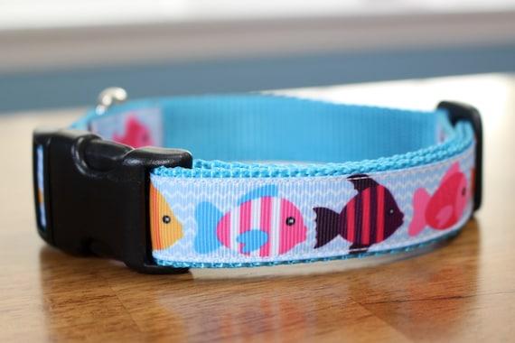 Tropical fish chevron dog collar for Fish dog collar