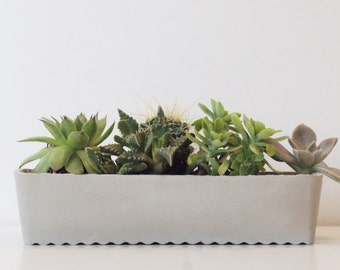 Large Concrete planters /Succulent planter / Air plant holder / Home decor / Concrete planter / Outdoor planter / Indoor planter / Gray