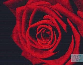 Romantic Rose PDF Cross Stitch Pattern