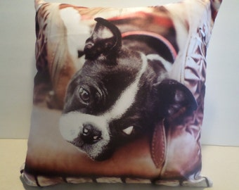 Adorable Boston Terrier Pillow, 18 by 18 inches!