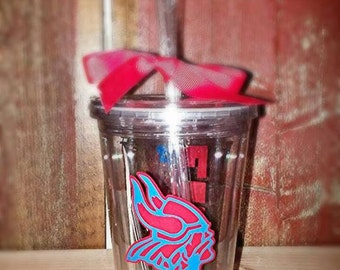Viking Pride Tumbler with Straw (5-pack tumblers)