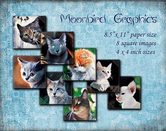 CATS - 8 Square Art Images Digital Collage Sheet – 4 x 4 inches – Printable Download for making coasters and cards