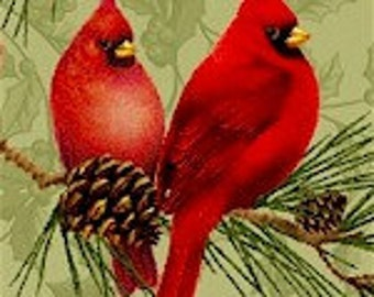 Red cardinals  for christmas