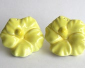 Yellow Flowers Salt and Pepper Shakers