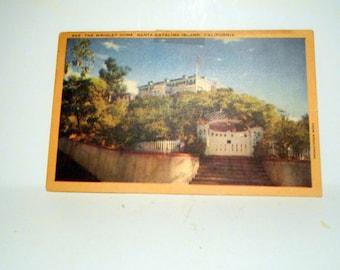 Vintage White border Postcard Lenin Post Card Wrigley Home Santa Catalina Island California