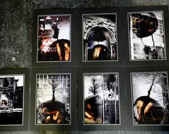 Sanctum Set (Set of Seven Photographs)