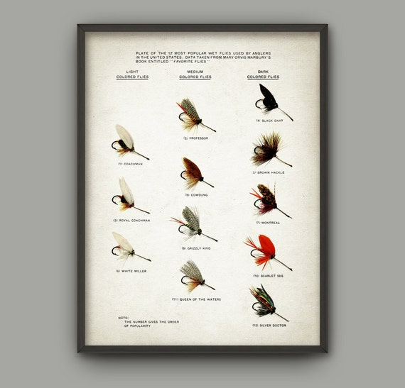 Fly fishing lure wall art poster game fishing art print for Fly fishing posters