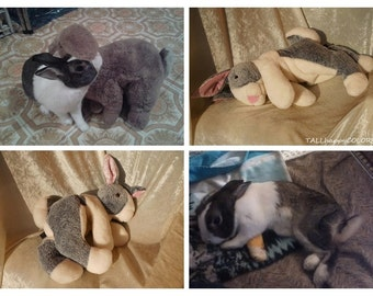 DUTCH Bunny plush, gray and white rabbit toy, stuffed animal dutch rabbit, rabbit breeds individual markings MADE to ORDER from photo ooak