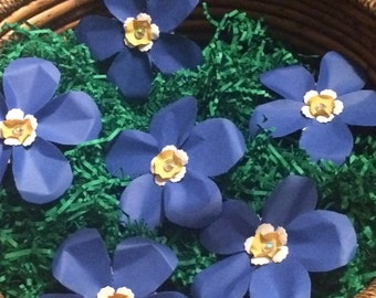 Paper Forget Me Nots - set of 12