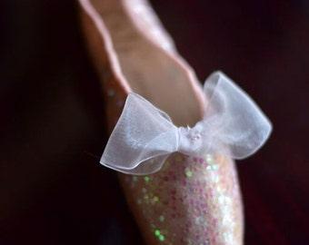 Glitter Pointe Shoe