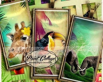 Domino Pendants Printable images  Digital Collage Sheet 1 x 2 inch Jewelry Backgrounds Clip Art Exotic animal images c101