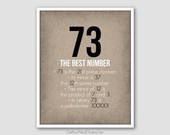 73 Best Number, Math Geek Poster, Math Classroom Decor, Nerdy Math Print