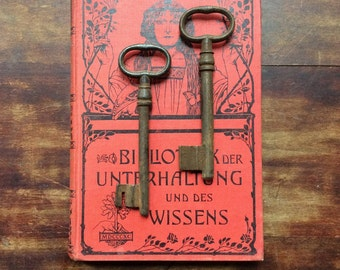 Large antique German Skeleton Keys