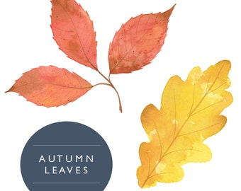 Handpainted Watercolor Autumn Fall Leaves Digital Clipart - Commercial Use