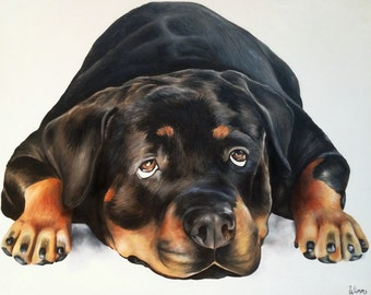 Custom Pet Portaits, Oil Painting