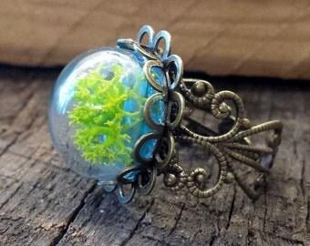 Alchemy Ring, Terrarium Ring, Statement Ring, Bronze Filigree