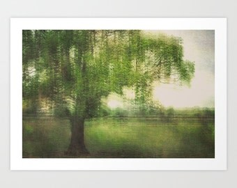 photo print, photography print, home decor, large size wall art, green tree nature zen landscape