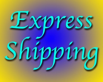 Express Mail - US Postal Service Expedited Shipping --  NEED it Sooner?