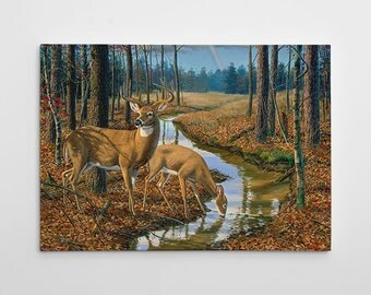 """Deer Wall Decor, Deer Hunting Canvas Art, Large Deer Painting, Deer Hunting Canvas Wall Art, Painting """"After the Rain"""" by Randy McGovern"""