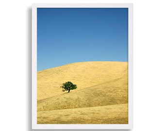 California Hills Photo Print Yellow Art Landscape Photography Lone Tree Wall Art Living Room Decor House Staging Nor Cal Hills Blue Sky Art