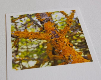 map ochre tree trunk and green leaves on paper fine art