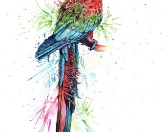parrot (red) - mounted original painting