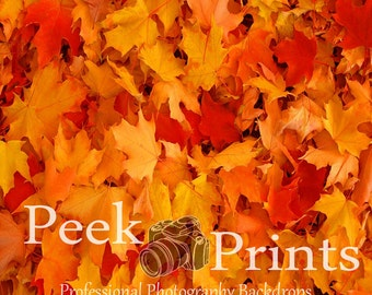 5ftx5ft Colors of Fall- Fallen Leaves- Fall Studio Backdrop
