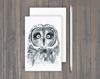 Hootie the Owl Postcard