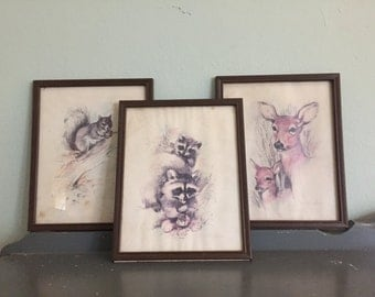 25% SALE *** Three Vintage Scafa-Tornabene Wildlife Framed Watercolor Prints