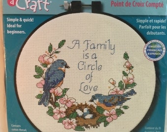 "Dimensions Counted Cross Stitch Kit ""Family Love"" 72900 Family Gift, Housewarming Gift, DIY Cross Stitch Learning Pattern"