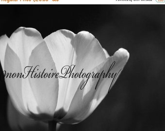 25% off Black and White Flower, Nature Photography