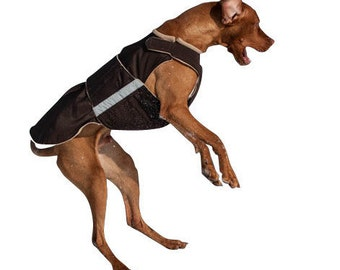 Vizsla / Pointer SoftShell Dog Coat - Custom Dog Winter Coat - Dog Coat - SoftShell / Fleece Coat - Custom made for your dog
