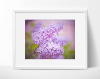 Instant Digital Download Fine Art Nature Photography - Lovely Lilac - Soft Colour - Bedroom Wall Art