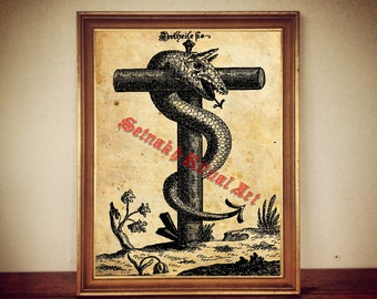216 Serpent Snake On The Cross Print Hermetic Illustration Gnostic Occult Poster