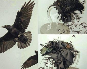 NeverMore Headdress- Crow Headdress