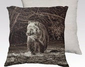 "Grizzly Bear Cub in Stream Photographic Pillow (18"" x 18"" and 22"" x 22"")"